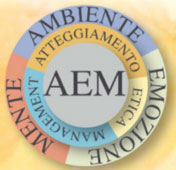 Modello-AEM